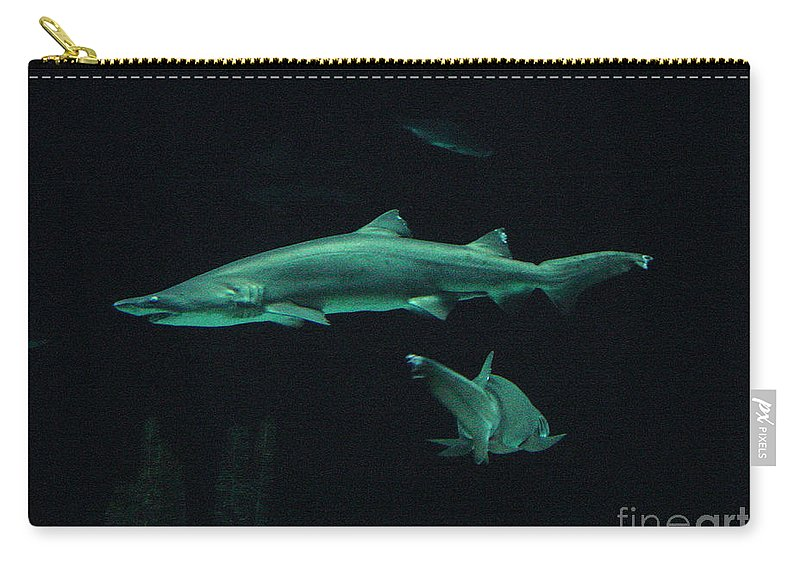 Shark Carry-all Pouch featuring the photograph Sharks-09433 by Gary Gingrich Galleries