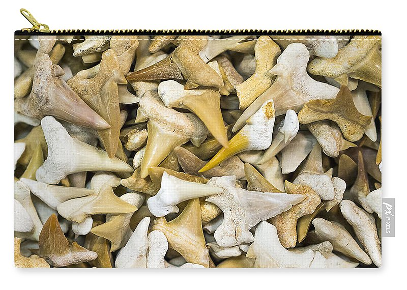 Gems Carry-all Pouch featuring the photograph Sharks Teeth by Steven Ralser