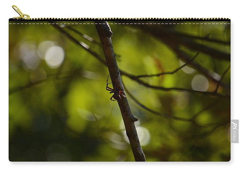 She Waits In Darkness Carry-all Pouch featuring the photograph She Waits In Darkness by Maria Urso