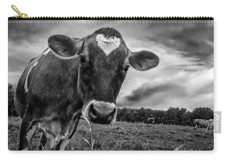 Cows Carry-all Pouch featuring the photograph She Wears Her Heart For All To See by Bob Orsillo