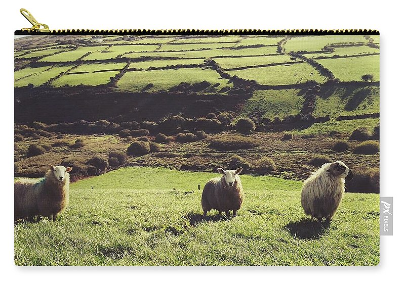 Pets Carry-all Pouch featuring the photograph Sheep Standing In Field by Thomas Peham / Eyeem
