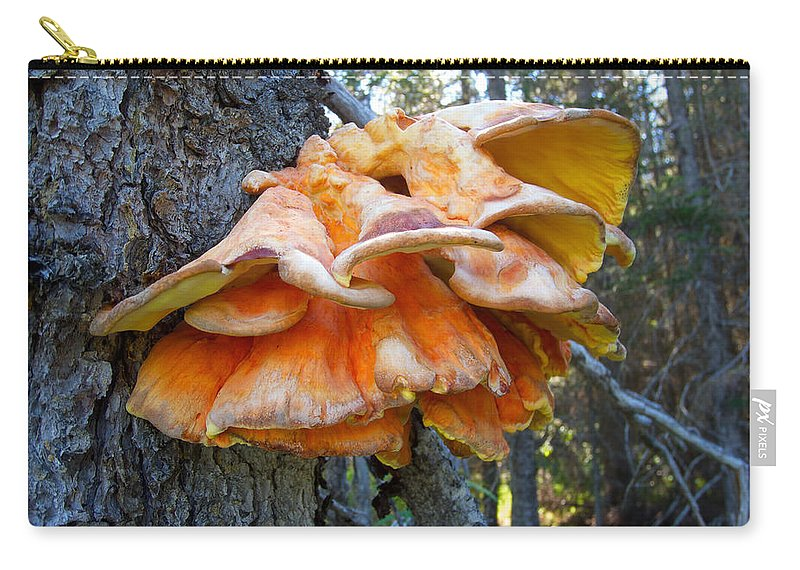Shelf Fungus Carry-all Pouch featuring the photograph Shelf Fungus In Carl E. Wynn Nature Center In Homer-ak  by Ruth Hager