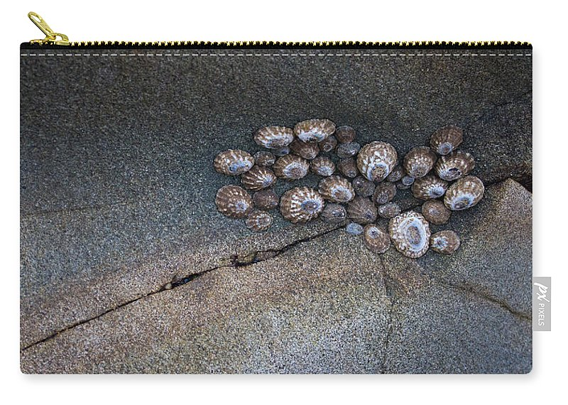 Rock Carry-all Pouch featuring the photograph Shell Games by Dayne Reast