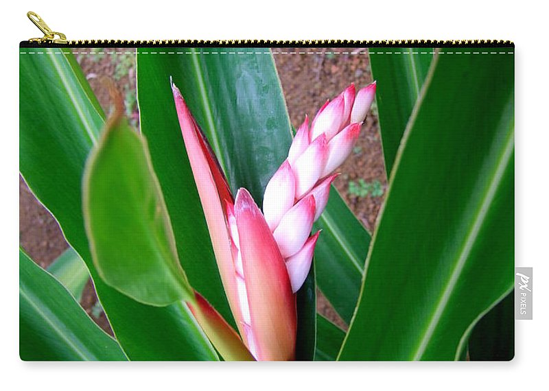 Flowers Carry-all Pouch featuring the photograph Shell Ginger Emerging by Mary Deal