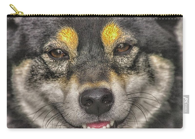 Japanese Breed Carry-all Pouch featuring the photograph Shiba Inu by Dennis Baswell