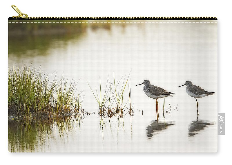 Shorebird Carry-all Pouch featuring the photograph Shorebirds At Dusk by John Vose