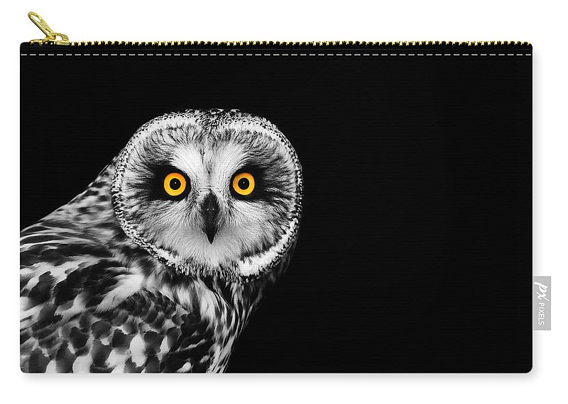 Short Eared Owl Carry-all Pouch featuring the photograph Short-eared Owl by Mark Rogan