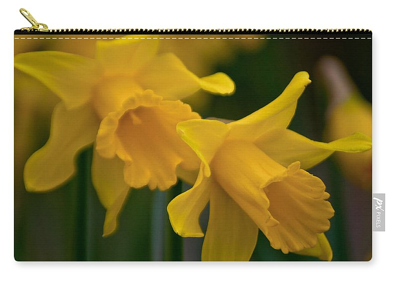 Daffodils Carry-all Pouch featuring the photograph Shout Out Of Spring by Tikvah's Hope