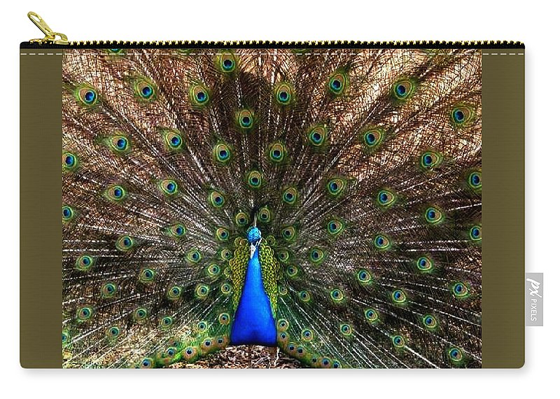 Nature Carry-all Pouch featuring the photograph Showing All His Glory by Kathy R Thomas