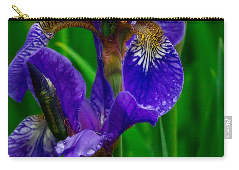 Purple Carry-all Pouch featuring the photograph Siberian Iris by Eti Reid