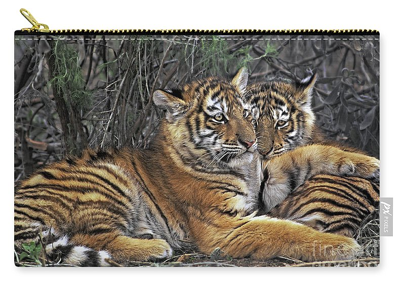 Siberian Tiger Carry-all Pouch featuring the photograph Siberian Tiger Cubs Endangered Species Wildlife Rescue by Dave Welling