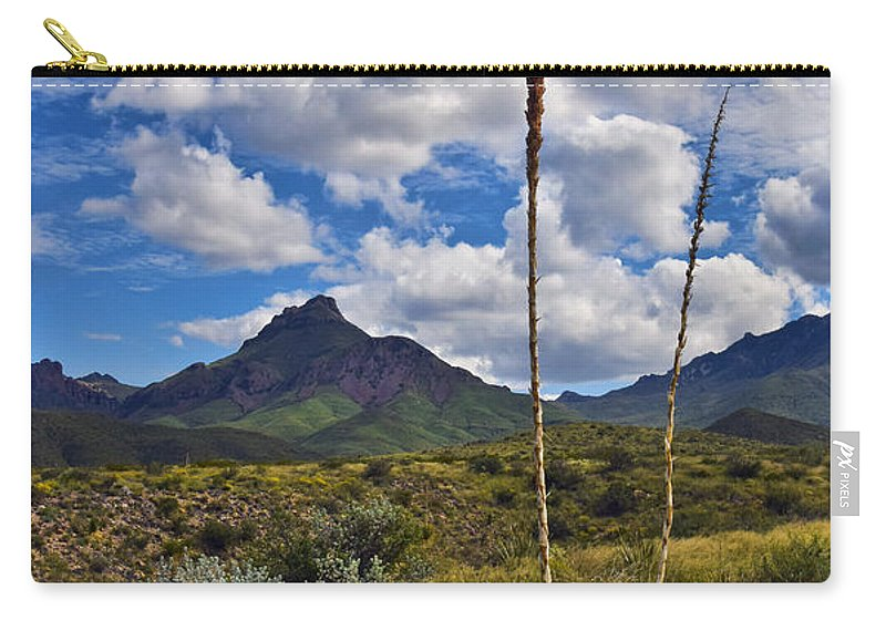 Siblings Carry-all Pouch featuring the photograph Siblings by Skip Hunt