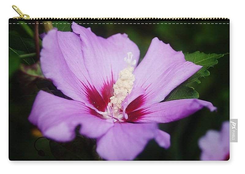 Flower Carry-all Pouch featuring the photograph Side Yard Flower 1 by Daniel Thompson