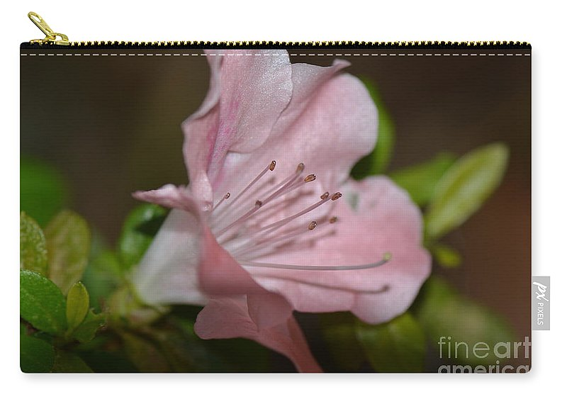 Honey Carry-all Pouch featuring the photograph Silent Pink Photo B by Barb Dalton