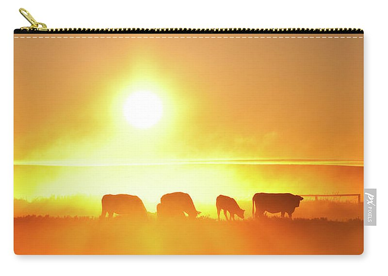 Scenics Carry-all Pouch featuring the photograph Silhouette Of Cattle Walking Across The by Imaginegolf
