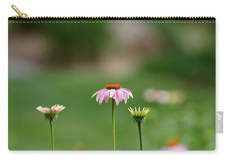 Cone Flowers Carry-all Pouch featuring the photograph Simplicity by Ernie Echols