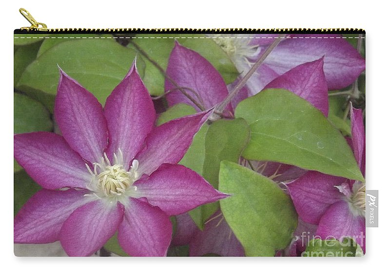 Flower Carry-all Pouch featuring the photograph Simplicity by Jennifer Lavigne
