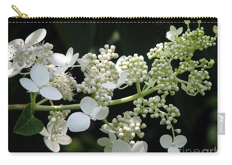 Hydrangea Carry-all Pouch featuring the photograph Simply by Amanda Barcon