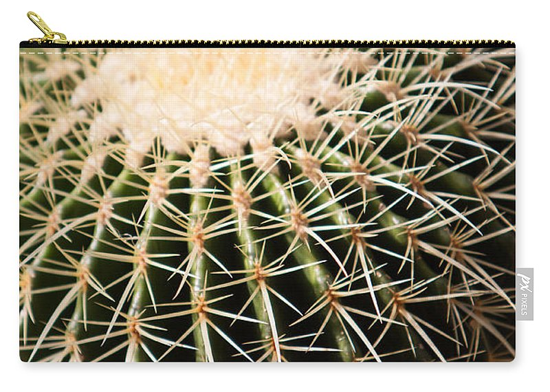 Botanical Carry-all Pouch featuring the photograph Single Cactus Ball by John Wadleigh