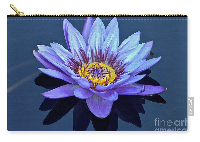 Nymphaea Carry-all Pouch featuring the photograph Single Lavender Water Lily by Byron Varvarigos