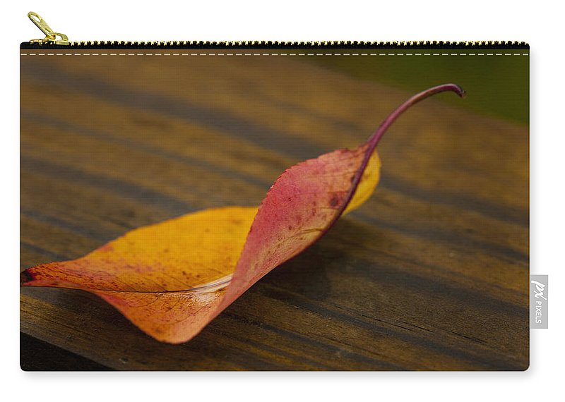 Single Leaf Carry-all Pouch featuring the photograph Single Leaf by Karol Livote