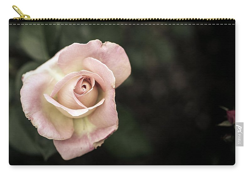 Bumble Bee Carry-all Pouch featuring the photograph Single Muted Rose by Sennie Pierson