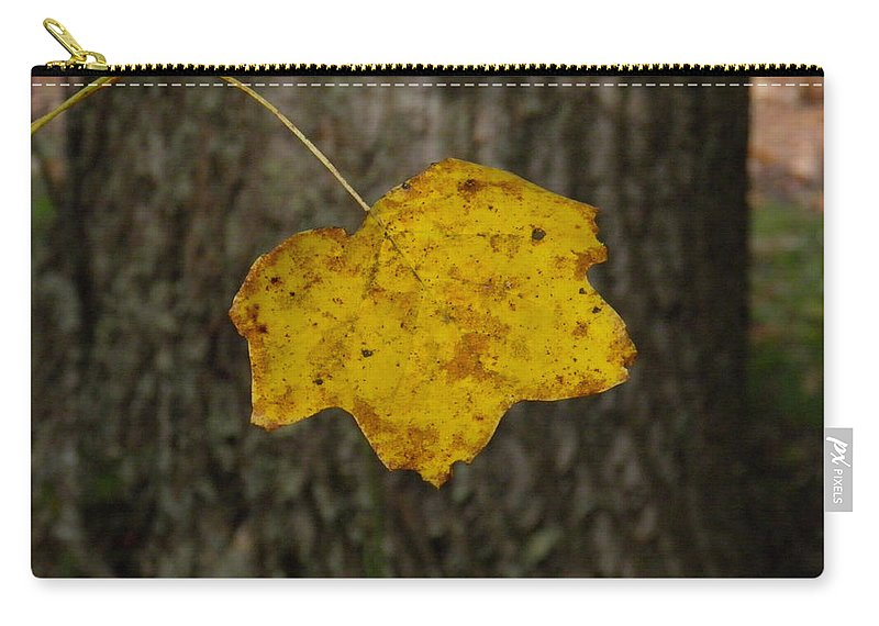 Leaf Carry-all Pouch featuring the photograph Single Poplar Leaf by Nick Kirby