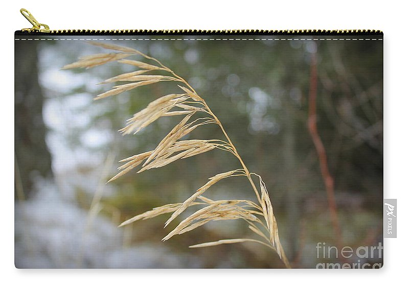 Grass Carry-all Pouch featuring the photograph Single Stalk by Leone Lund