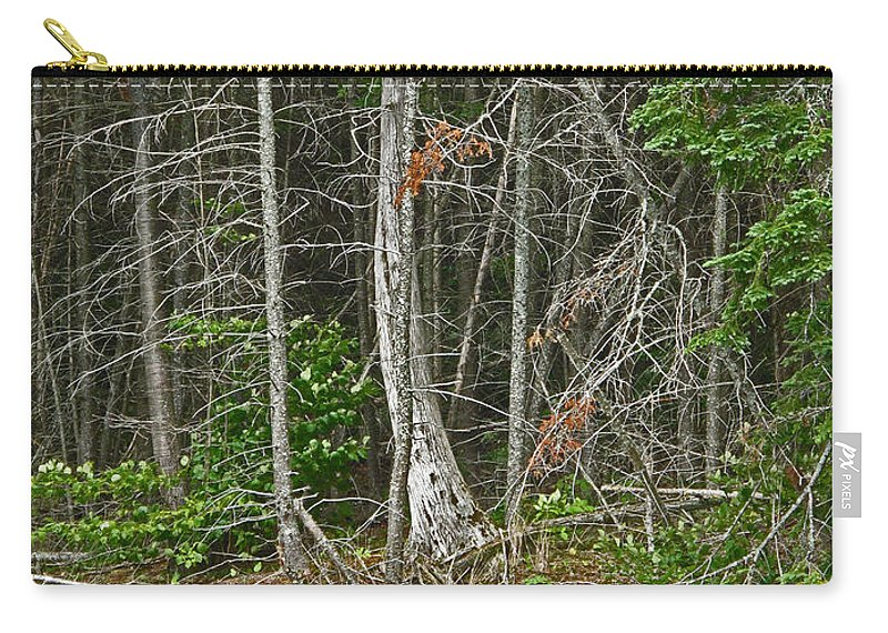 Northern Carry-all Pouch featuring the photograph Skeleton by Ian MacDonald