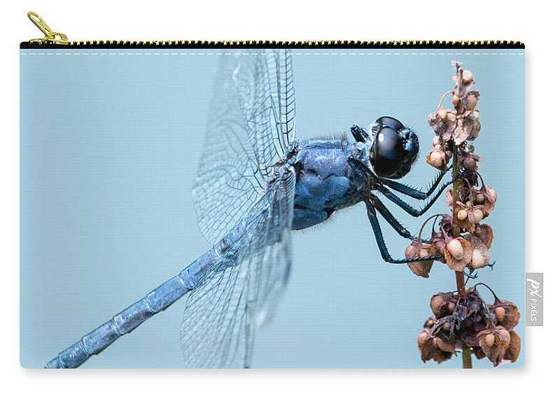 Animal Carry-all Pouch featuring the photograph Slaty Skimmer by Abeselom Zerit