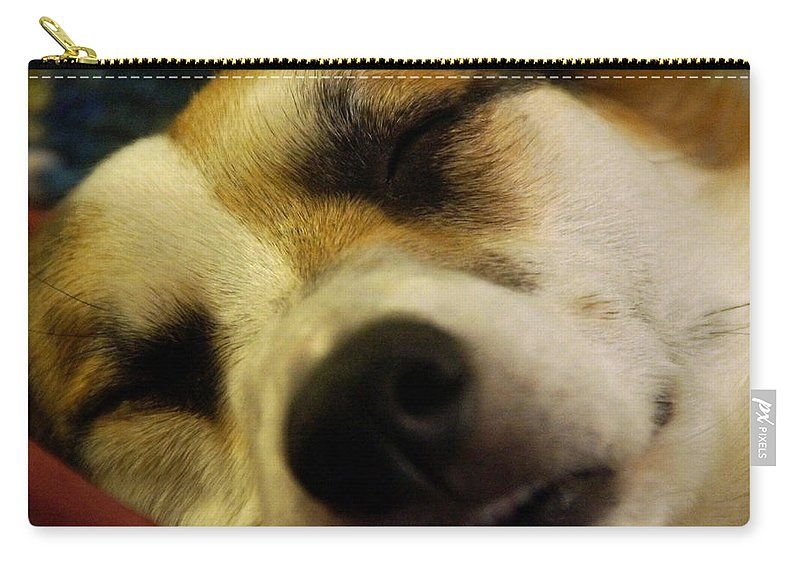 Sleeping Carry-all Pouch featuring the photograph Sleeping Corgi by Mick Anderson