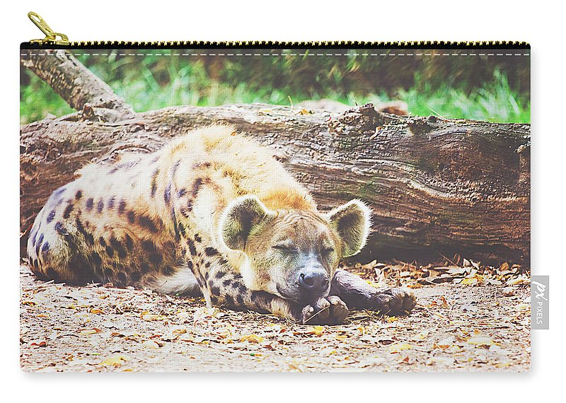Sleeping Hyena Carry-all Pouch featuring the photograph Sleeping Hyena by Pati Photography