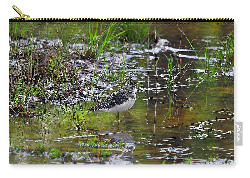 Shorebird Carry-all Pouch featuring the photograph Sleeping Sandpiper by Al Powell Photography USA