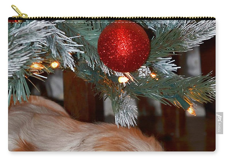 Christmas Carry-all Pouch featuring the photograph Sleeping Under The Tree II by Debbie Portwood