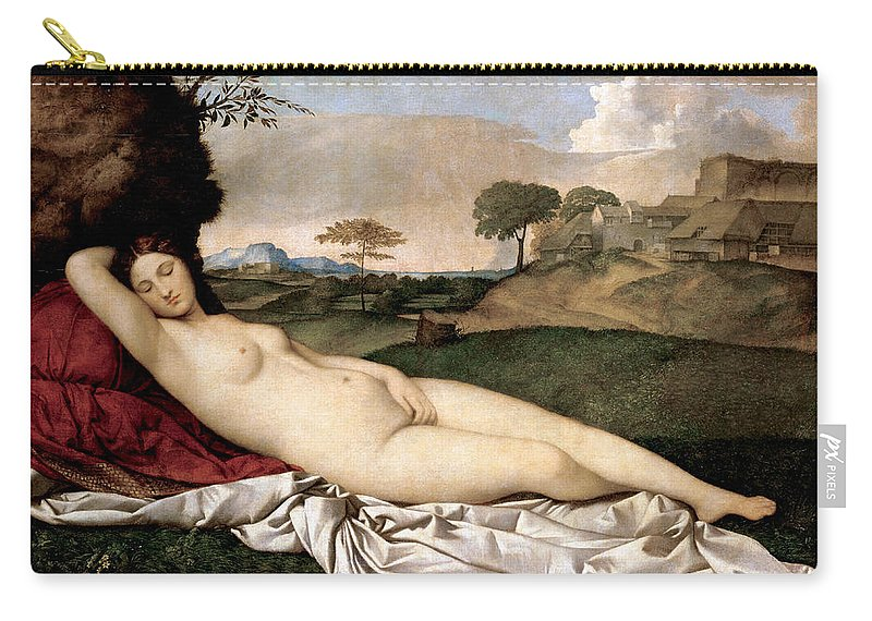 Painting Carry-all Pouch featuring the photograph Sleeping Venus by Munir Alawi