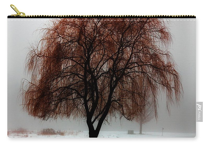 Weeping Willow Carry-all Pouch featuring the photograph Sleeping Willow by Rick Kuperberg Sr