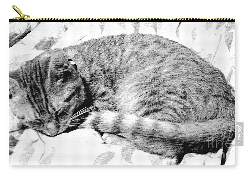 Sleeping Kitten Carry-all Pouch featuring the photograph Sleepy Kitty by Lilliana Mendez
