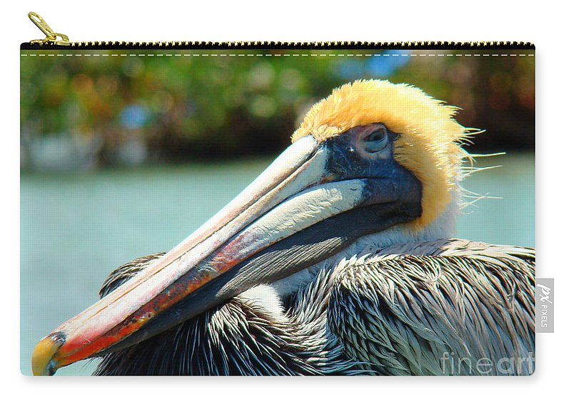 Pelican Carry-all Pouch featuring the photograph Sleepy Pelican by Nancy L Marshall