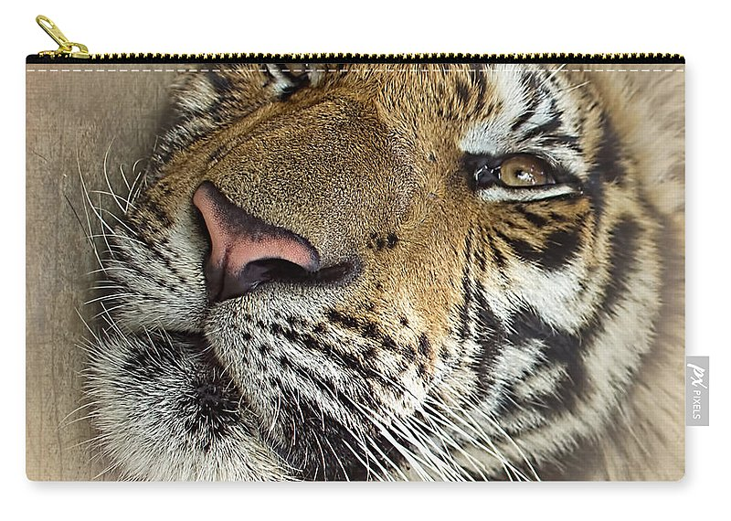 Photography Carry-all Pouch featuring the photograph Sleepy Tiger Portrait by Kaye Menner