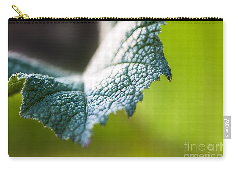Botanical Carry-all Pouch featuring the photograph Slice Of Leaf by John Wadleigh
