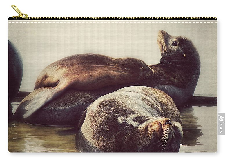Seals. Seal Carry-all Pouch featuring the photograph Slumbering On Mama by Melanie Lankford Photography