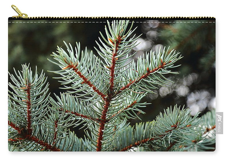Pine Trees Carry-all Pouch featuring the photograph Small Pine by Scott Hill