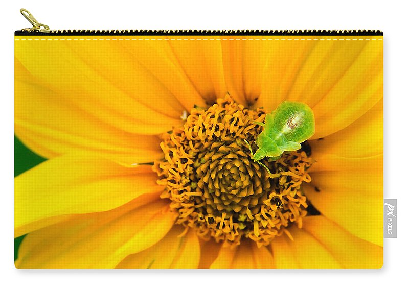 3scape Photos Carry-all Pouch featuring the photograph Small World by Adam Romanowicz