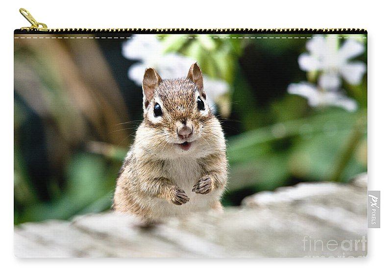 Chipmunk Carry-all Pouch featuring the photograph Smiling Chipmunk by Cheryl Baxter