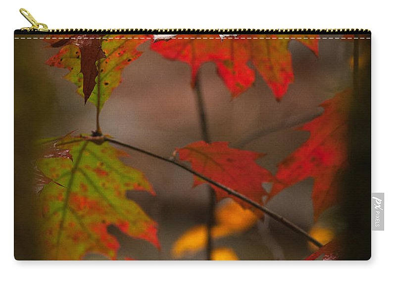 Carry-all Pouch featuring the photograph Smoky Mountain Color II by Douglas Stucky