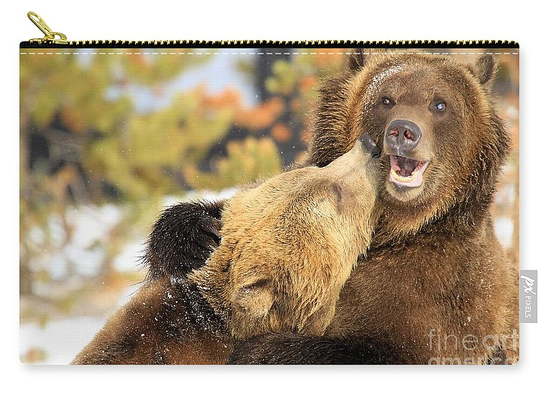 Grizzly Bear Carry-all Pouch featuring the photograph Smooch by Adam Jewell