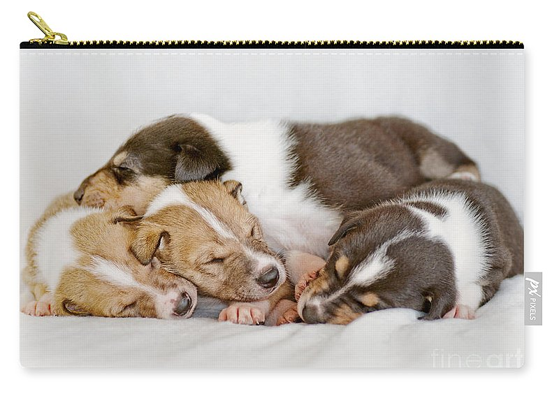 Collie Carry-all Pouch featuring the photograph Smooth Collie Puppies Taking A Nap by Martin Capek