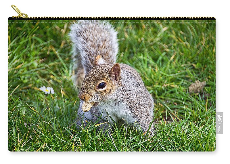 Nothe-fort Carry-all Pouch featuring the photograph Snack Time For Squirrels by Susie Peek