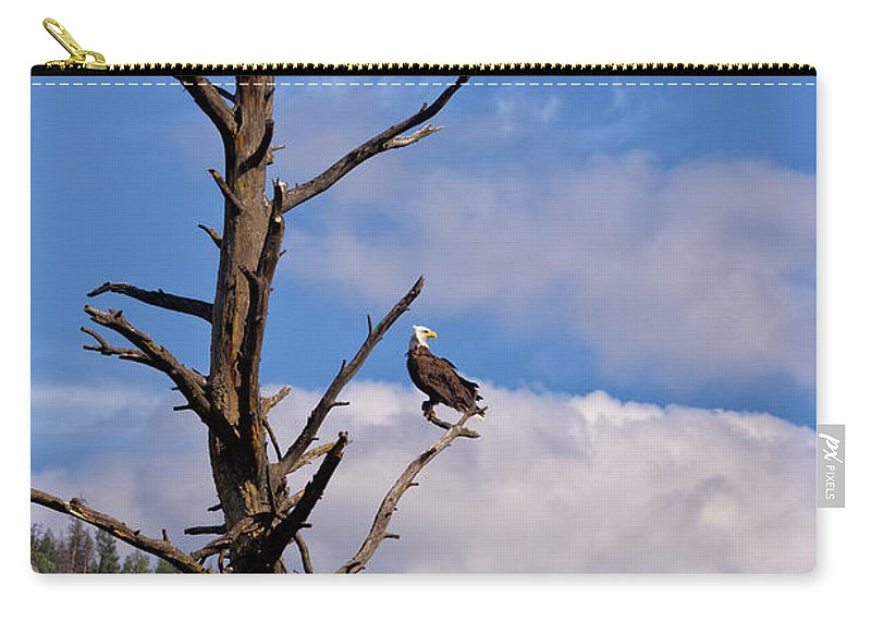 Nature Carry-all Pouch featuring the photograph Snag by Kathleen Bishop