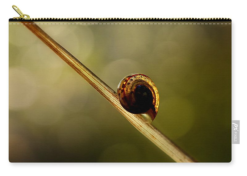 Snail Carry-all Pouch featuring the photograph Snail by Heike Hultsch